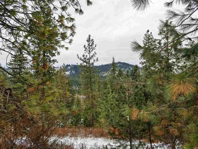 4104 Ali Vista Way, Loon Lake, WA 99148 (#202011459) :: Prime Real Estate Group