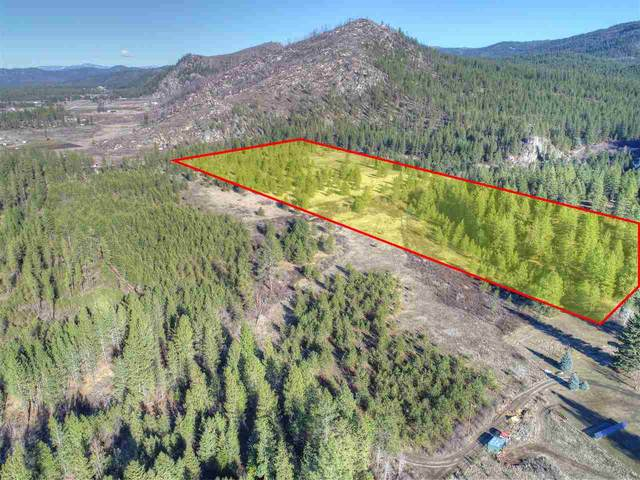 4902 C Rail Canyon Rd Tax Segregation, Springdale, WA 99173 (#202011460) :: RMG Real Estate Network
