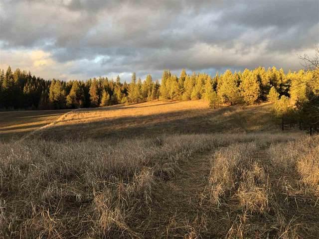 15xxx Blanchard, Elk, WA 99009 (#202011482) :: The Spokane Home Guy Group