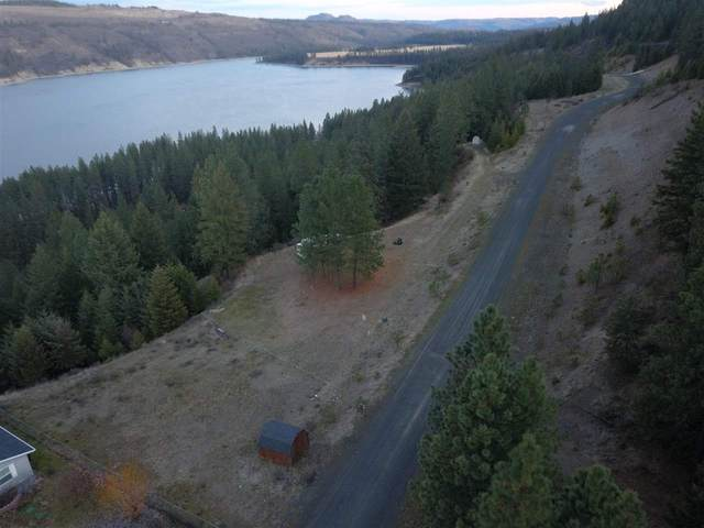 43300 Quill N Dr, Davenport, WA 99122 (#202011490) :: Northwest Professional Real Estate