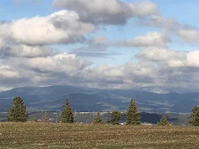 00 N Gerlach Rd, Spokane, WA 99217 (#202011663) :: Five Star Real Estate Group