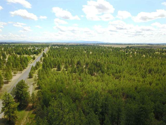 000 W Buckboard Ave Lot 5: Dover 2n, Medical Lake, WA 99022 (#202011673) :: The Synergy Group