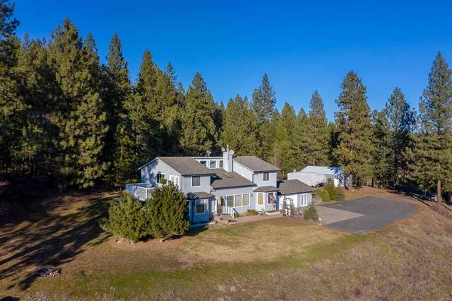 16137 N Day-Mount Spokane Rd, Mead, WA 99021 (#202011799) :: The Hardie Group