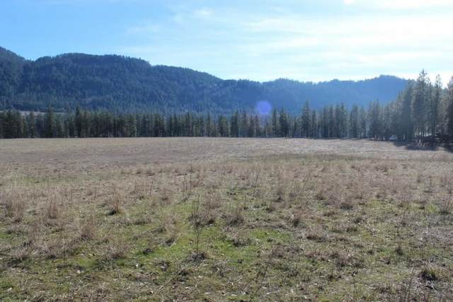 2034 Ray Anderson Rd Lot 4, Kettle Falls, WA 99141 (#202011806) :: Keller Williams Realty Colville
