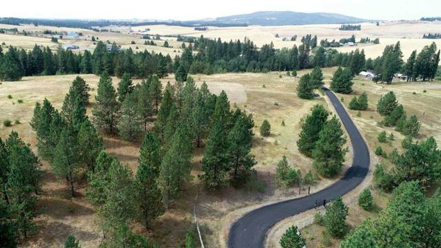 NKA S Mica Vista Ln, Mica, WA 99023 (#202011864) :: Prime Real Estate Group