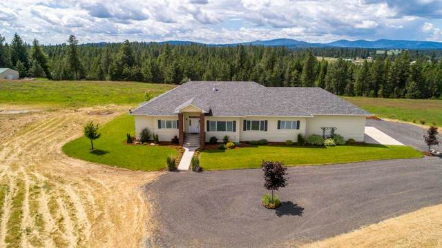 24411 N Carey Ln, Deer Park, WA 99006 (#202011899) :: Northwest Professional Real Estate