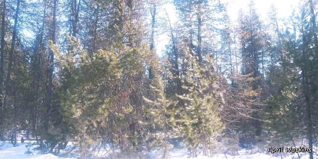 0000 E Slayton, Deer Park, WA 99006 (#202011944) :: The Synergy Group