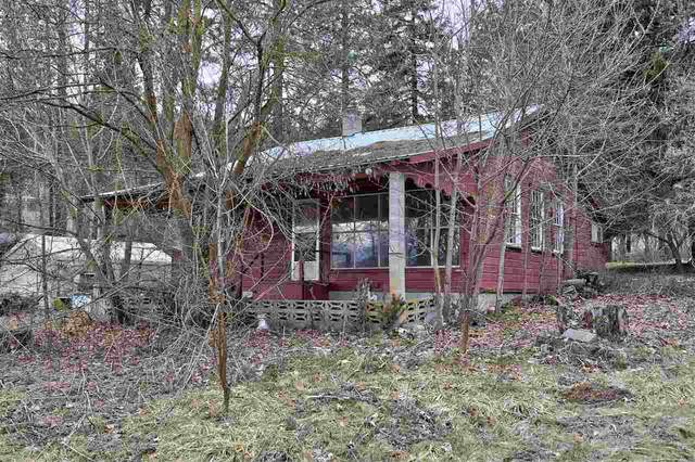 6735 Highway 291 Hwy, Nine Mile Falls, WA 99026 (#202012040) :: Top Agent Team