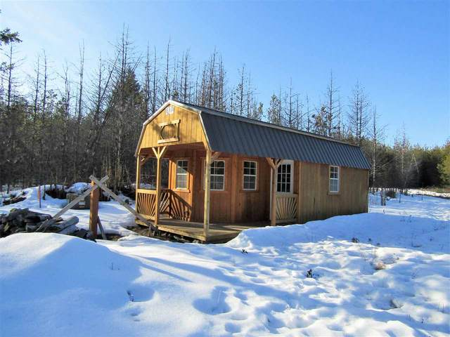 Lot 9 Pines Rd, Newport, WA 99156 (#202012064) :: The Spokane Home Guy Group