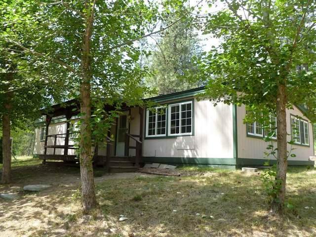 301 Giddings Rd, Newport, WA 99156 (#202012094) :: Chapman Real Estate