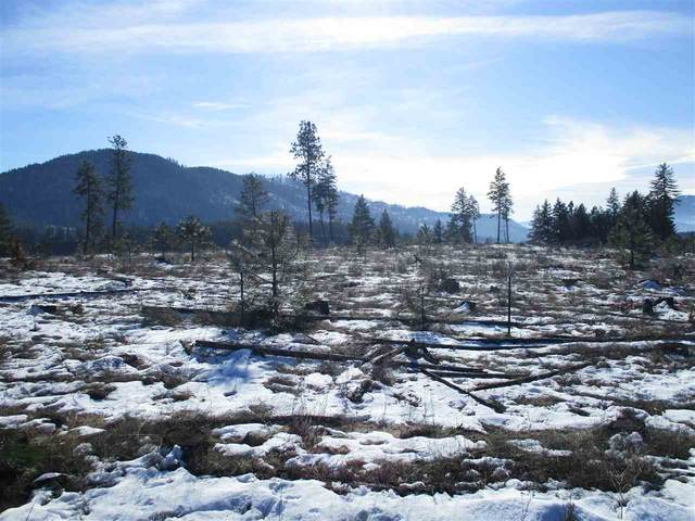 6xx Gillette Rd Lot 4, Colville, WA 99114 (#202012178) :: The Spokane Home Guy Group