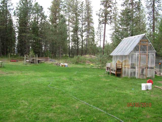 4186 Cemetery Rd, Springdale, WA 99173 (#202012272) :: The Synergy Group