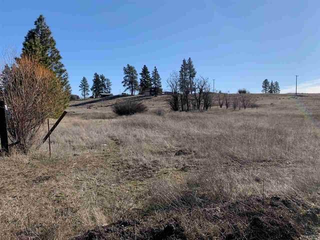 NNA SE Elm St Lot 2, Malden, WA 99149 (#202012398) :: Top Spokane Real Estate