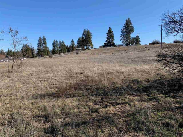 NNA SE Elm St Lot 5, Malden, WA 99149 (#202012399) :: Top Spokane Real Estate