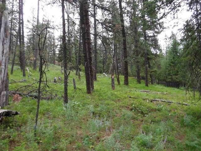 Bigfoot Ln, Elk, WA 99009 (#202012405) :: The Synergy Group