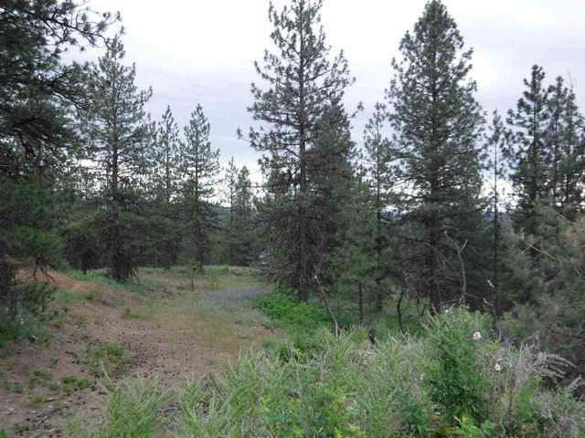 X Bigfoot Ln, Elk, WA 99009 (#202012408) :: Five Star Real Estate Group