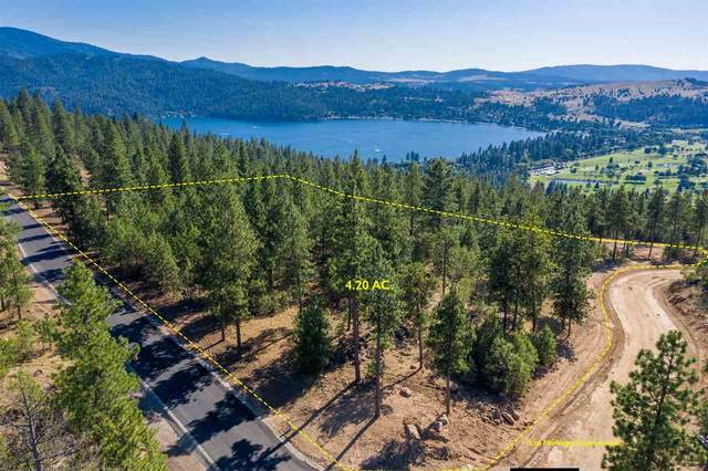 519 N Blue Skies Ln, Liberty Lake, WA 99019 (#202012464) :: Parrish Real Estate Group LLC