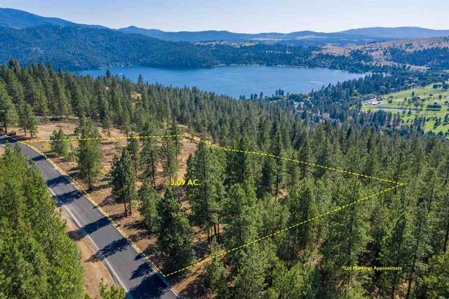 411 N Blue Skies Ln, Liberty Lake, WA 99019 (#202012465) :: Parrish Real Estate Group LLC
