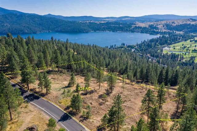 313 N Blue Skies Ln, Liberty Lake, WA 99019 (#202012466) :: Parrish Real Estate Group LLC