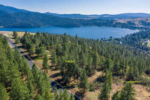 217 N Blue Skies Ln, Liberty Lake, WA 99019 (#202012467) :: Parrish Real Estate Group LLC