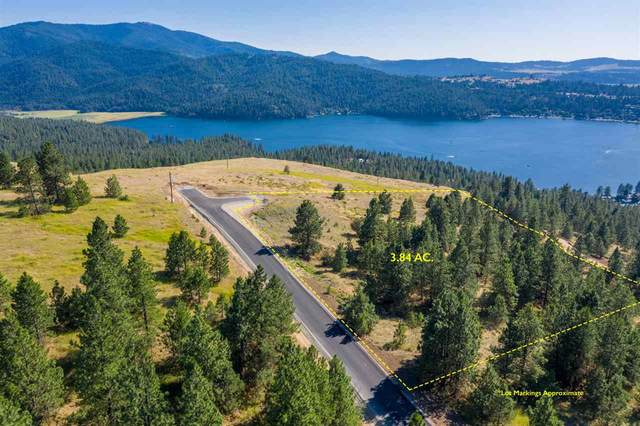 109 N Blue Skies Ln, Liberty Lake, WA 99019 (#202012469) :: Parrish Real Estate Group LLC