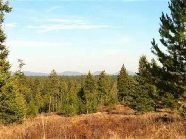 TBD 9073 N Vista Point Ln, Deer Park, WA 99006 (#202012614) :: Prime Real Estate Group