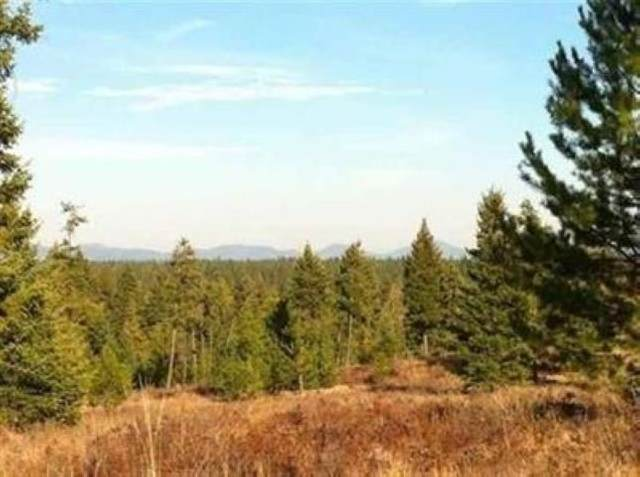 TBD 9073 N Vista Point Ln, Deer Park, WA 99006 (#202012614) :: The Spokane Home Guy Group