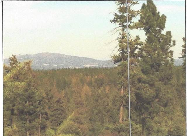 TBD  Lot#23 N Vista Point Ln, Deer Park, WA 99006 (#202012616) :: Freedom Real Estate Group