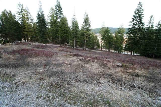 xxx N West Newman Lake Dr, Newman Lake, WA 99025 (#202012619) :: Prime Real Estate Group