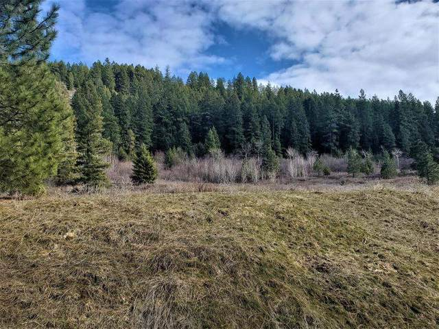 23XX Bossburg Rd, Evans, WA 99126 (#202012721) :: Prime Real Estate Group
