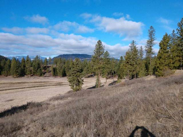 000 Hwy 395 Hwy, Valley, WA 99181 (#202013034) :: Prime Real Estate Group