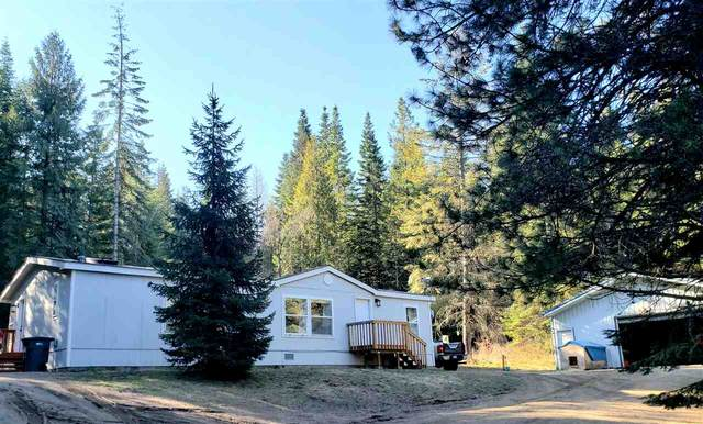 10808 E Tallman Rd, Chattaroy, WA 99003 (#202013159) :: Northwest Professional Real Estate