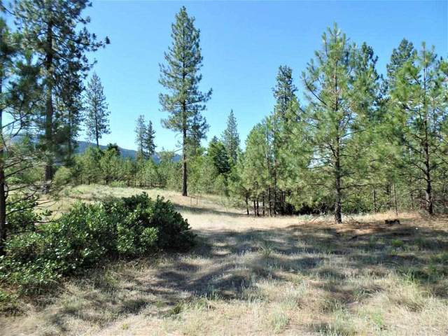 Lot 111 Old Kettle Rd, Kettle Falls, WA 99141 (#202013180) :: Prime Real Estate Group