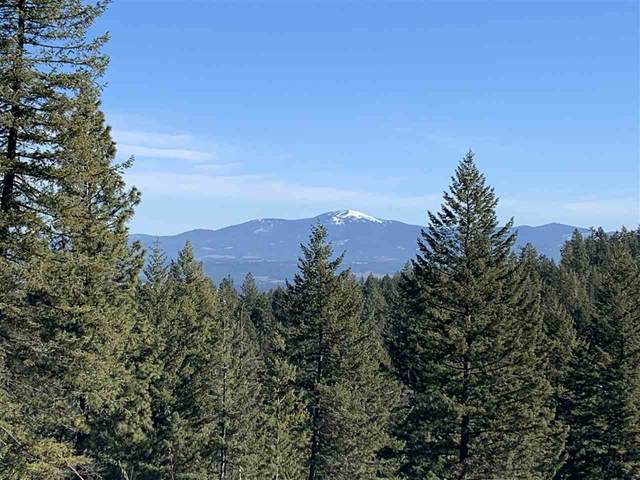 6314 W Lookout Mountain Ln Site #1A, Spokane, WA 99208 (#202013189) :: Chapman Real Estate