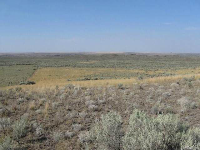 TBD NE Rd X Rd, Odessa, WA 99159 (#202013195) :: The Spokane Home Guy Group