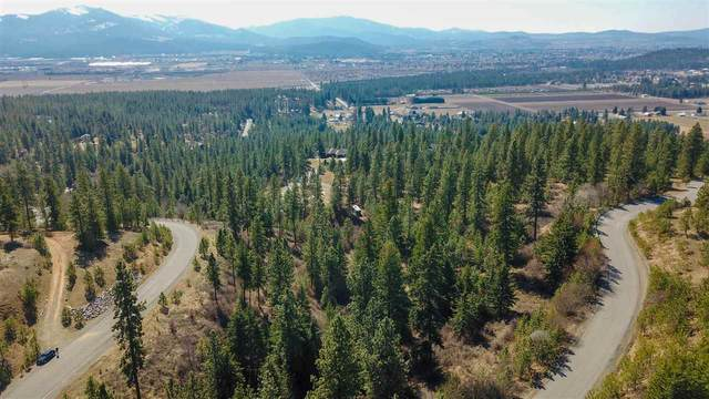 10305 N Lookout View Ln, Newman Lake, WA 99025 (#202013197) :: RMG Real Estate Network