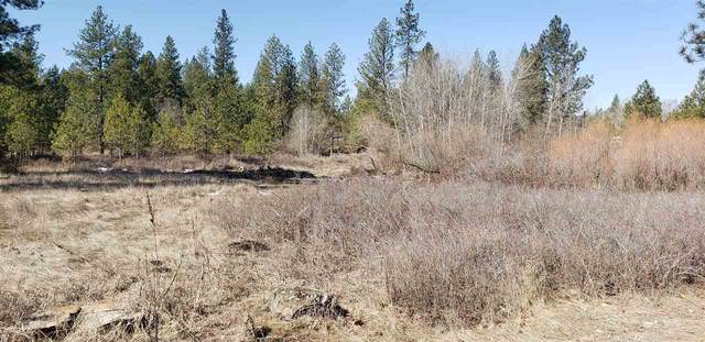 XXX S Freeman Dr Lot #10, Medical Lake, WA 99022 (#202013259) :: Five Star Real Estate Group