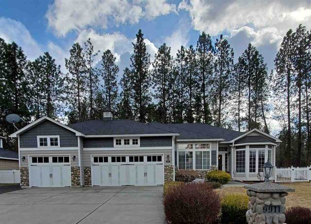 9911 N Parkside Dr, Nine Mile Falls, WA 99026 (#202013556) :: The Synergy Group