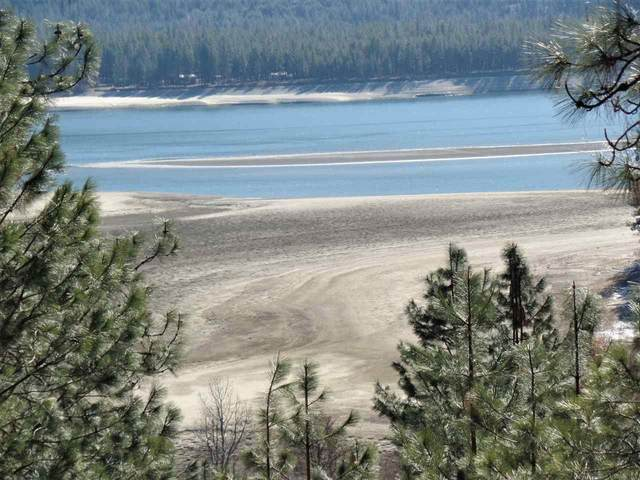 Inchelium Hwy Hwy, Kettle Falls, WA 99141 (#202013682) :: Prime Real Estate Group