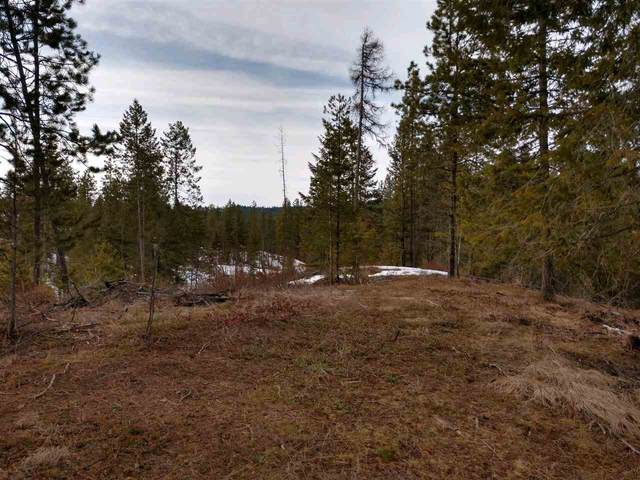 001 Olinger Rd, Springdale, WA 99173 (#202013836) :: Top Spokane Real Estate