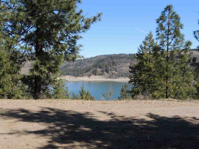 42051 Porcupine Bay Rd. N. Lot 5 Narrows S, Davenport, WA 99122 (#202013849) :: Prime Real Estate Group