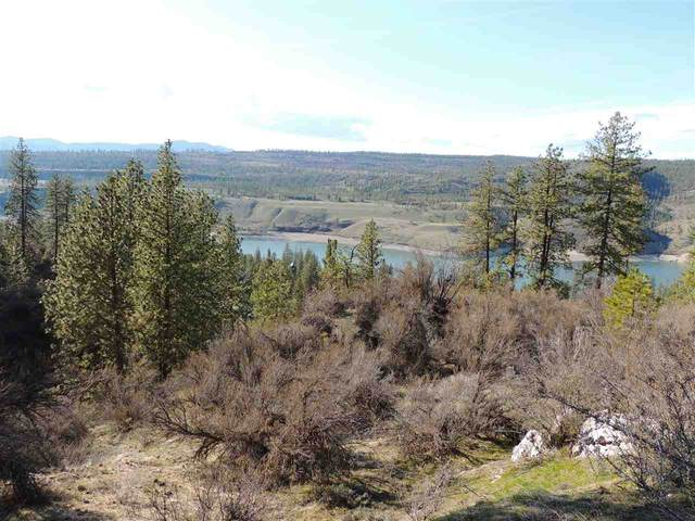33025 North Hills Dr E, Davenport, WA 99122 (#202014141) :: Top Spokane Real Estate