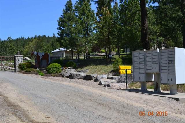 XX Blueridge Way Lot #36, Deer Park, WA 99006 (#202014823) :: The Hardie Group