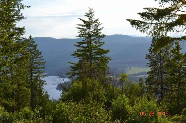 XX Blueridge Way Lot #42, Deer Park, WA 99006 (#202014827) :: Prime Real Estate Group