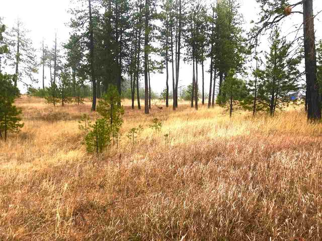 0000 N Christensen Rd, Nine Mile Falls, WA 99026 (#202014912) :: The Spokane Home Guy Group