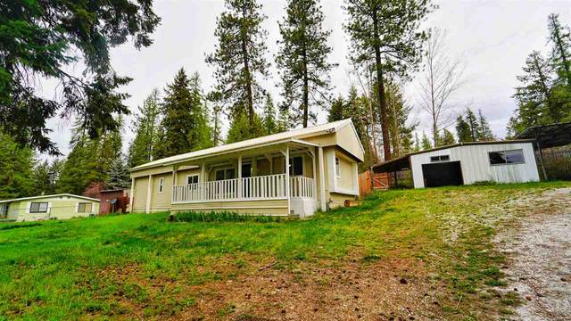 3351 Bobcat Valley Ln, Valley, WA 99181 (#202014971) :: Top Agent Team