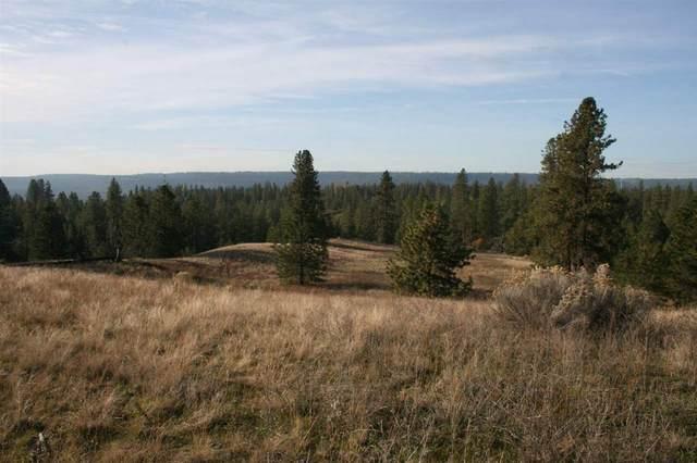 000 Weaver Rd, Deer Park, WA 99006 (#202014990) :: The Synergy Group