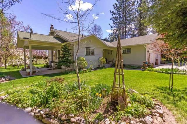 425391 Hwy 20 Hwy, Usk, WA 99180 (#202015096) :: Northwest Professional Real Estate