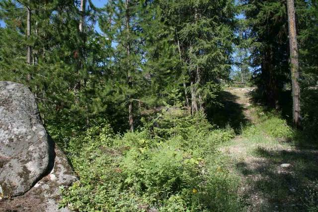 0000 Granite Rd Lot 6 Blk 4, Newport, WA 99156 (#202015386) :: The Synergy Group