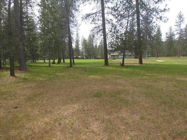 183 Trappers Loop Rd, Chewelah, WA 99109 (#202015679) :: The Spokane Home Guy Group